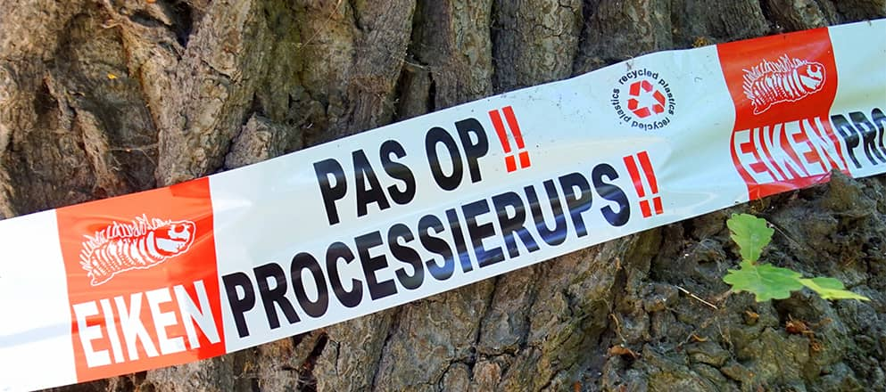 Lint dat waarschuwt voor de processierups