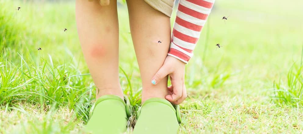 Meisje wat jeukt door de muggen